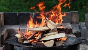 Brinnande trä i spisen arkivfilmer