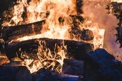 Brinnande träd för brasa på natten Stor orange flamma på en svart bakgrund svart brand Ljust värme, ljus som campar, royaltyfria foton