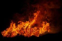 Brinnande träd för brasa på natten svart brand Ljust värme, ljus och att campa, stor brasa arkivbild