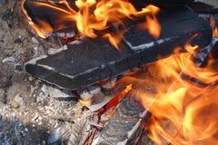 Brinnande trän i en fyrpanna arkivfoton