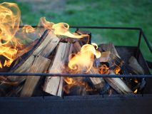 Brinnande tr? i en brandn?rbild arkivfoto