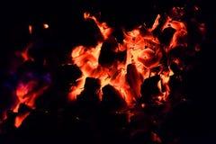 Brinnande varma kol i gallret royaltyfria foton