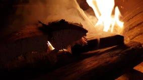 Brinnande vedträ i spis stock video
