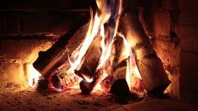 Brinnande vedträ i spisen stock video