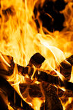 Brinnande vedträ Fotografering för Bildbyråer
