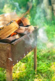Brinnande vedträ i fyrpanna på grön gräsmatta Arkivbild