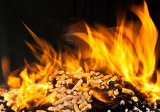 Brinnande wood kula Arkivbilder