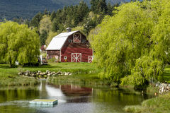 Brinnon Washington Barn by Pond Royalty Free Stock Photography