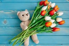 Brinque o urso com tulipas em um fundo de madeira azul imagem de stock