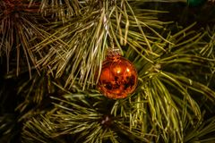Brinquedo da árvore de Natal em um close-up do ramo fotografia de stock