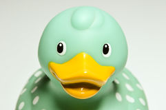 Brinquedo da borracha da boneca do pato Fotos de Stock Royalty Free