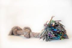 Brinquedo da corda do cão foto de stock