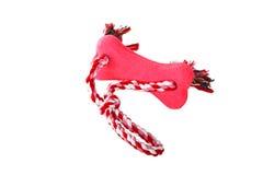 Brinquedo da corda do reboque do cão Imagens de Stock