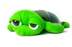 Brinquedo da tartaruga verde Fotos de Stock Royalty Free