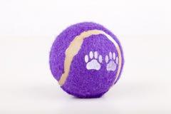 Brinquedo do cão Imagens de Stock Royalty Free