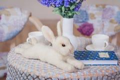 Brinquedo do coelho de Fluffly Fotografia de Stock Royalty Free