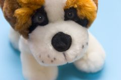 Brinquedo do filhote de cachorro Fotos de Stock Royalty Free