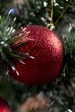 Brinquedo do Natal Fotos de Stock