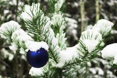 Brinquedo do Natal em uma árvore nevado Foto de Stock