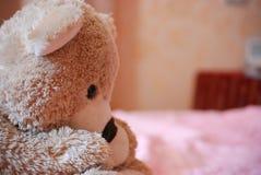 Brinquedo do urso Imagens de Stock
