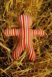 brinquedo listrado ?lored no campo Fotografia de Stock