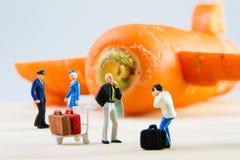 Brinquedo minúsculo que viaja pelo plano feito das cenouras Imagem de Stock