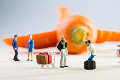 Brinquedo minúsculo que viaja pelo plano feito das cenouras Fotografia de Stock Royalty Free