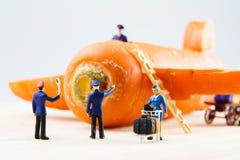 Brinquedo minúsculo que viaja pelo plano feito das cenouras Imagens de Stock Royalty Free