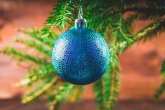 brinquedo no ramo de árvore do Natal Imagem de Stock