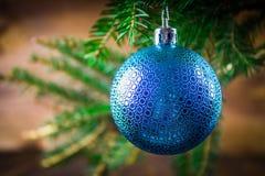 brinquedo no ramo de árvore do Natal Foto de Stock