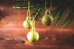 brinquedo no ramo de árvore do Natal Foto de Stock Royalty Free