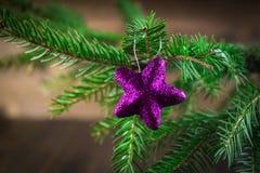 brinquedo no ramo de árvore do Natal Imagem de Stock Royalty Free