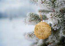 Brinquedo redondo das lantejoulas do ouro que pendura em um ramo de árvore As agulhas são Fotografia de Stock Royalty Free