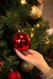 Brinquedo vermelho do Natal nas mãos de uma menina Foto de Stock