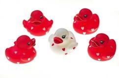 Brinquedos de borracha do pato Fotografia de Stock