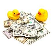 Brinquedos do dinheiro e do pato Fotografia de Stock Royalty Free