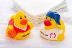 Brinquedos do pato Fotos de Stock