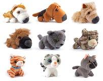 Brinquedos do Softness Foto de Stock Royalty Free