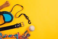 Brinquedos - multi corda colorida, bola, trela de couro e osso Acessórios para o jogo e o treinamento na opinião superior do fund Foto de Stock Royalty Free
