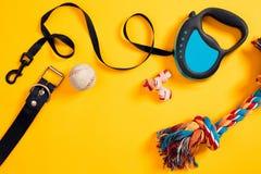 Brinquedos - multi corda colorida, bola, trela de couro e osso Acessórios para o jogo e o treinamento na opinião superior do fund Foto de Stock