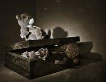 Brinquedos perdidos Foto de Stock Royalty Free