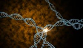 Brins d'ADN Image stock