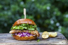 Brioche bun with burger, fried onions, pickled cucumber and cress stock photography