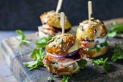 Brioche buns with salmon and salad. Multi seeded brioche buns with hot smoked salmon, cucumber, salad and yogurt sauce Royalty Free Stock Photography