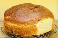 brioche chlebowy dom zrobił Fotografia Royalty Free