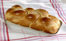 Brioche from Vend e Royalty Free Stock Photo