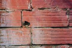 Brique endommagée Photo libre de droits