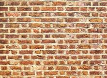Brique et mur Image stock