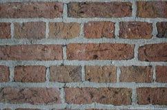 Brique rouge Photos libres de droits