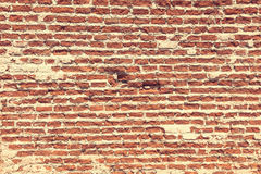Brique rouge de brique Image stock